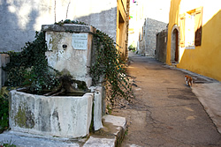 T-fontaine-ruelle_250x167_IMG_2596